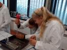 Chemická analýza